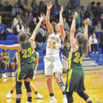 Lady Hounds nipped by Wilkes