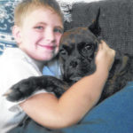 Family searching for missing therapy dog