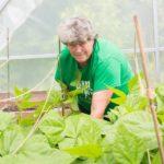 Class to teach winter gardening basics