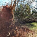 Winds disrupt county
