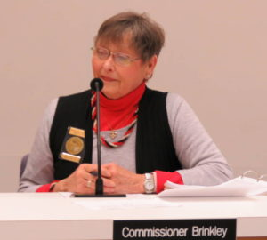 Commissioner criticizes city audit firm